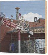 American Visionary Art Museum In Baltimore Wood Print