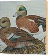 American Widgeons Wood Print
