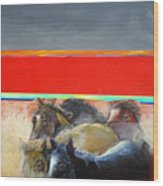 American Wild Horses Herded To Slaughter Wood Print