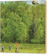 Americana - People - Let's Go Fly A Kite Wood Print by Mike Savad
