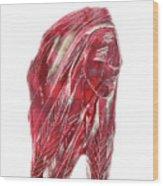 Amerind Wood Print