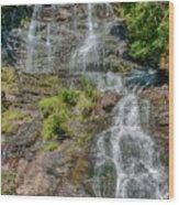 Amicalola Falls Wood Print