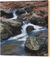 Amicalola Stream Wood Print