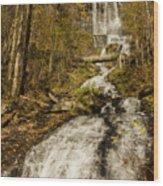 Amicola Falls Gushing Wood Print