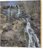 Amicolola Falls Wood Print