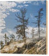 Amidst The Steam Wood Print