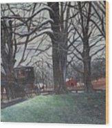 Amish 1 Wood Print