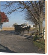 Amish 4 Wood Print by Eric Irion