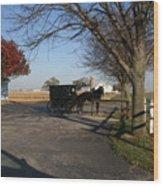 Amish 4 Wood Print