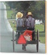 Amish Boys On A Ride Wood Print by Lori Seaman