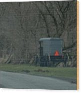Amish Buggy Parked By A Creek Wood Print