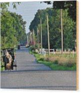Amish Buggy Sunny Summer Wood Print