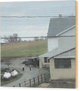Amish Children Walk To The Barn Wood Print