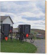 Amish Country Carts Autumn Wood Print