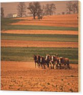 Amish Country Farm Landscape Wood Print