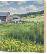 Amish Country Farm Warrens Wood Print