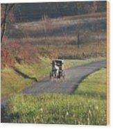 Amish Country Horse And Buggy In Autumn Wood Print