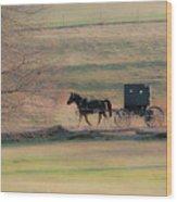 Amish Dream Wood Print