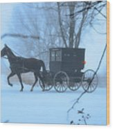 Amish Dreamscape Wood Print by David Arment