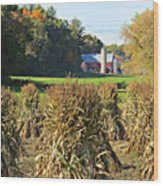 Amish Farm Country Fall Wood Print