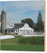 Amish Farm - Lancaster 02 Wood Print