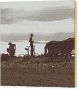 Amish Farmer 2 Wood Print