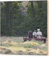 Amish Farmer Raking Hay At Dusk Wood Print