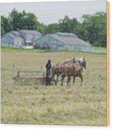 Amish Girl Raking Hay As Painting Wood Print