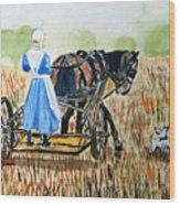 Amish Girl With Buggy Wood Print
