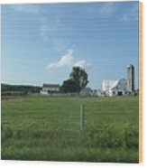 Amish Homestead 38 Wood Print