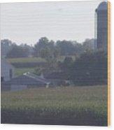 Amish Homestead 40 Wood Print