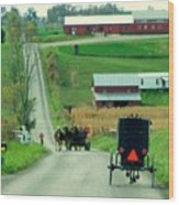 Amish Horse And Buggy Farm Wood Print
