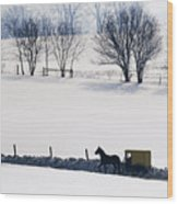 Amish Horse And Buggy In Snowy Landscape Wood Print
