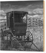 Amish Horse Buggy In Black And White Wood Print