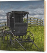 Amish Horse Buggy Wood Print