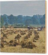 Amish Making Grain Shocks Wood Print