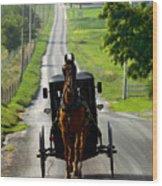 Amish Morning Commute Wood Print