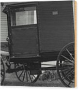 Amish Wagon _pa Wood Print