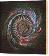 Ammonite Galaxy Wood Print