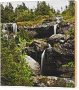 Ammonoosuc Falls Wood Print