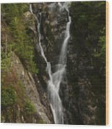 Ammonoosuc Ravine Falls Wood Print