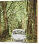 Among Tall Trees Wood Print