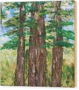Among The Ferns Wood Print