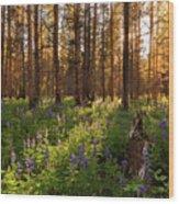 Among The Lupines Wood Print