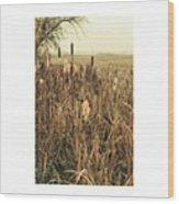 *among The Reeds  #landscape Wood Print