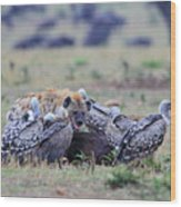 Among The Vultures 2 Wood Print