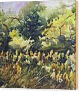 Amongst The Goldenrods Wood Print