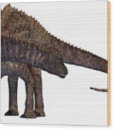 Ampelosaurus Armored Dinosaur Wood Print