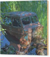 Amphibious Vehicle Wood Print
