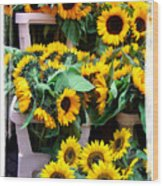 Amsterdam Sunflowers Wood Print